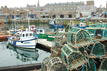 Lobster pots in Peterhead. Photo: scanfishphoto