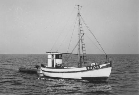 Måken 1955