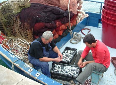 Fiskere i Makarska. Foto: Kystbloggen