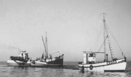 Nøkkerosa og Måken 1955