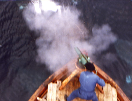 Fireing the harpoon gun. Photo: Ole M. Rogn