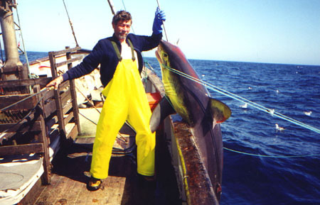 A porbeagle on the hook