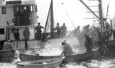 Ramsøysund med kast