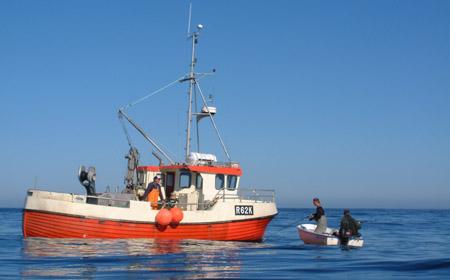 Fiska i norge