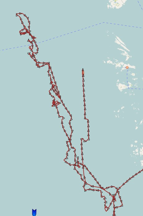 bluefin makrellstørje ais 220817