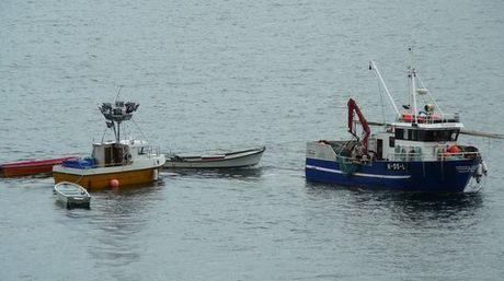 Brislingfiske med Hosøybuen 2013